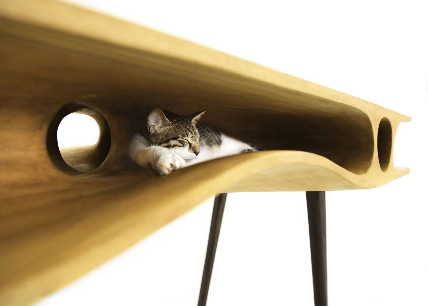CATable is a locus where the interaction of people and cats occurs. It is a stylish working table for cat ...