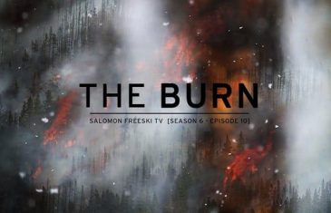 Every summer, forest fires burn wildly across the temperate mountain regions of the world.