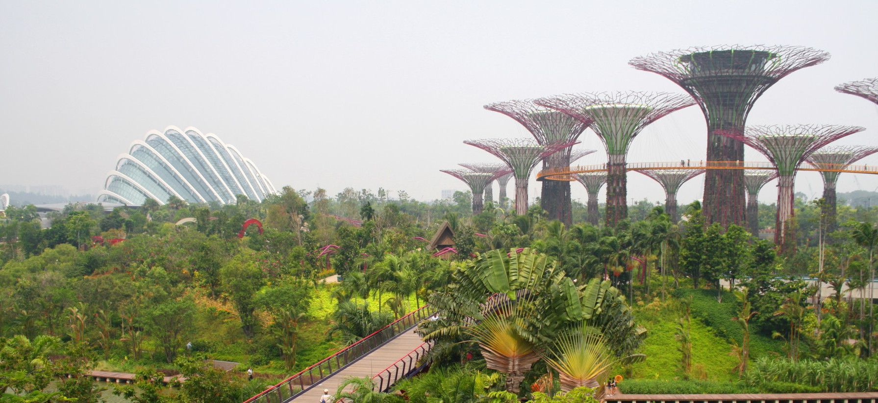 Some places in the world will leave you speechless and Singapore's Supertree Grove and Cloud Forest are definitely one of ...