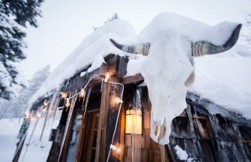 When she returns to Idaho, DuPont has a 500-square-foot tiny house - complete with wooden shingles, a cow skull, and ...