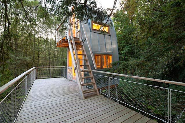 A Two-Storey Treehouse Set On A Pond