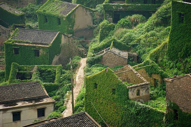 Old Fishing Village China Overtaken Nature Ivy