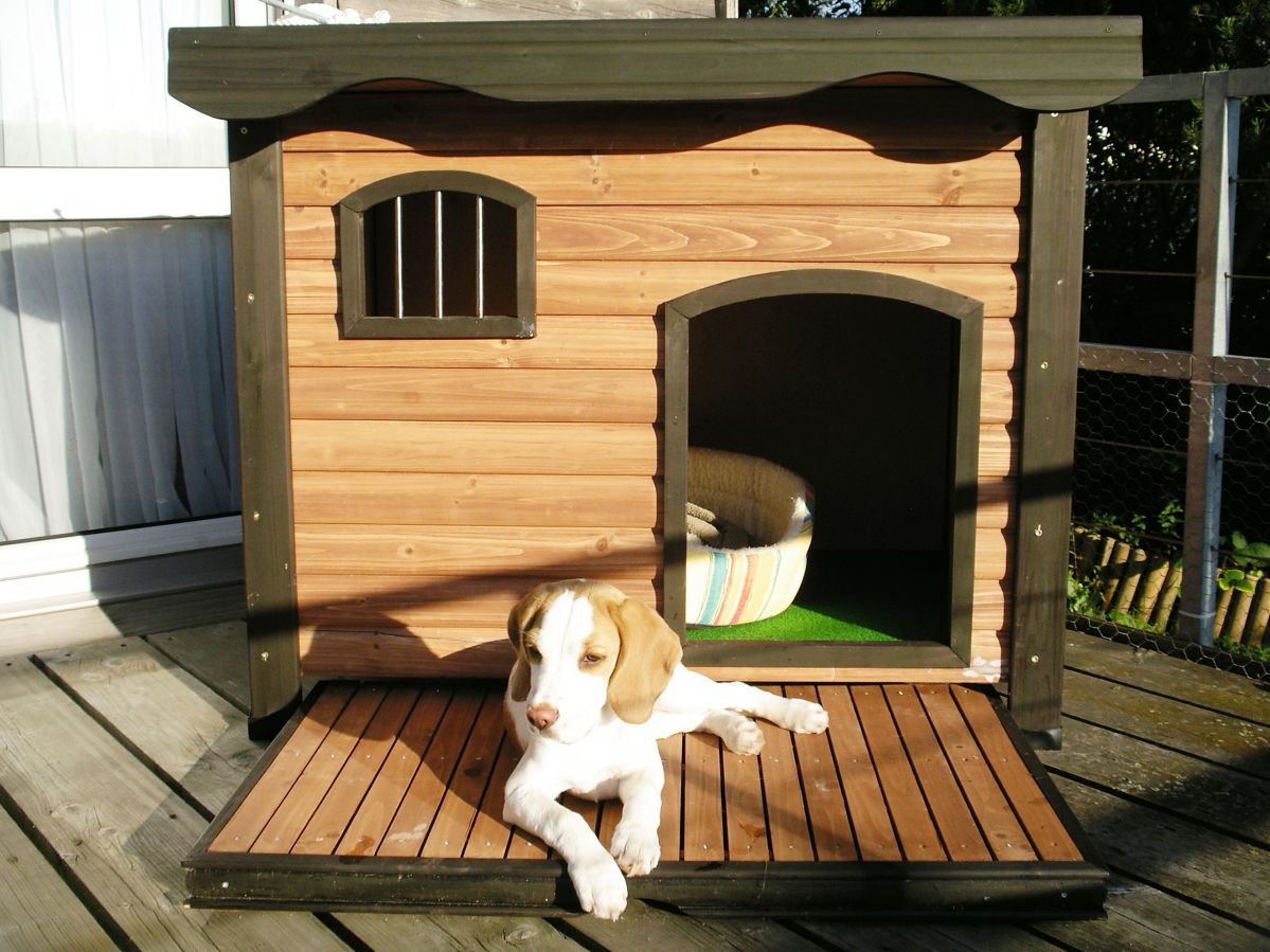 Wooden dog house ideas