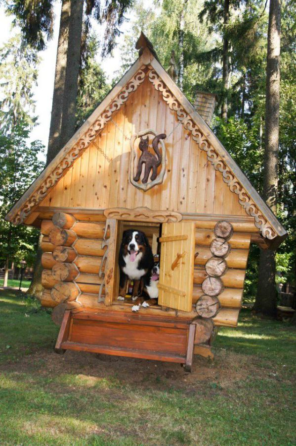 7 dog house ideas woodz