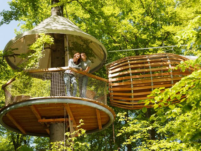 A Very Special Treehouse That Hugs The Tree And Hangs On Straps