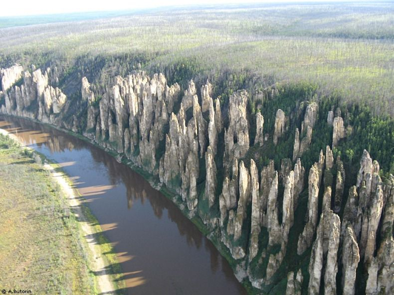 Lena stone forest russia