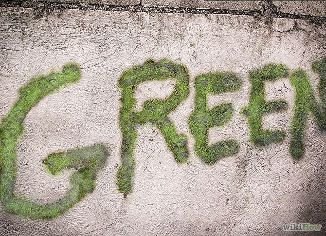 Tips For Making Your Own Moss Graffiti