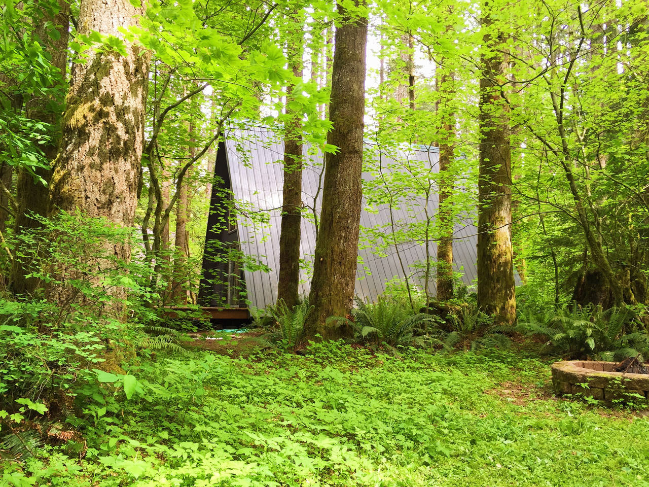 wood cabin design ideas in the woods