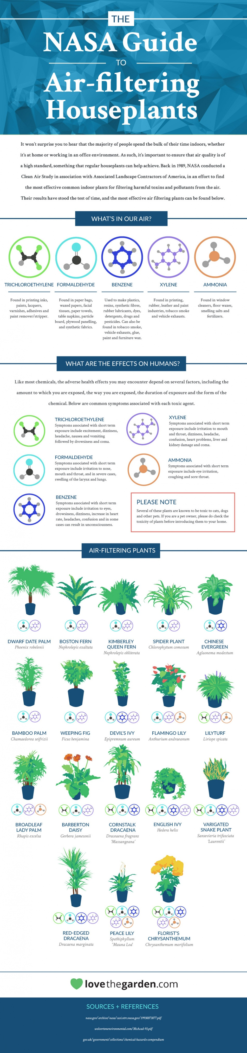 NASA Reveals A List Of The Best Air-Cleaning / Air-Filtering HousePlants For Your Home