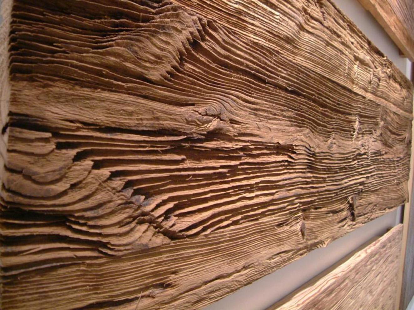nature wood wall design ideas