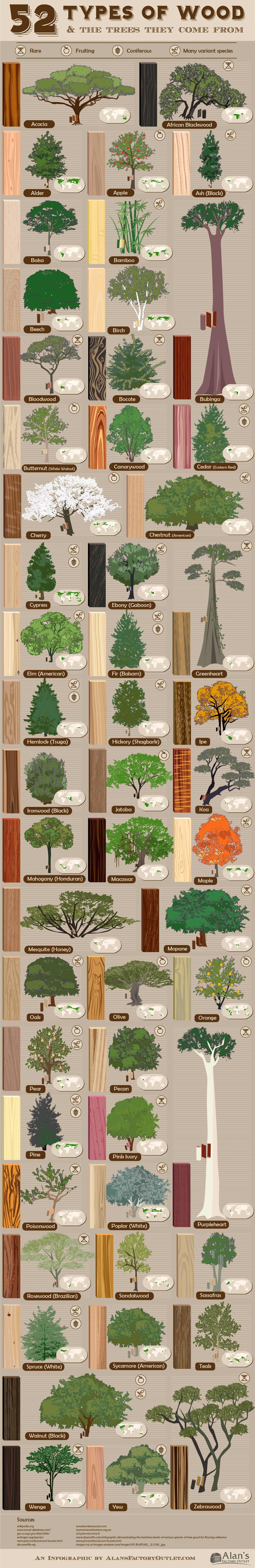 trees, wood, infographic, woodworking, diversity, woodz