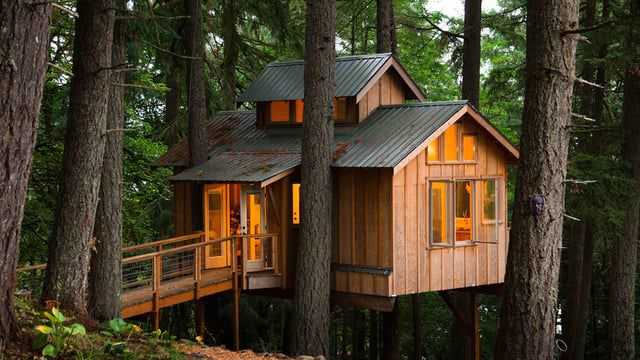 Would you live in a treehouse? The appeal is obvious to any kid, but it can seem like a daunting ...