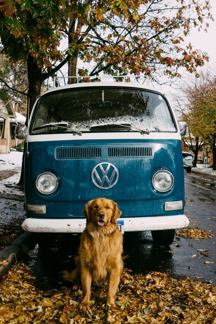 Aspen. Volkswagen. | © Hunter Lawrence