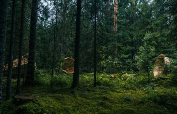 The project started a year ago with a workshop deep in the woods of South Estonia, with Estonian Art Academy ...