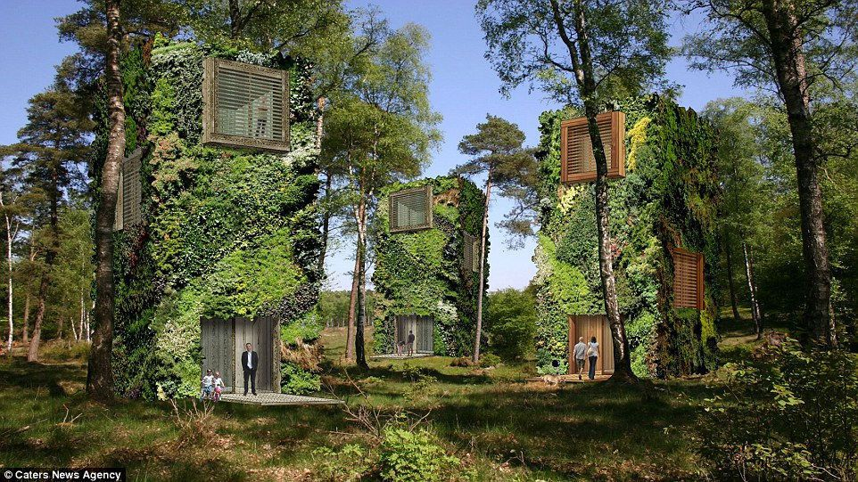 Living in a city with your house looking like a tree, sounds impossible, right? Well, it may actually become a ...