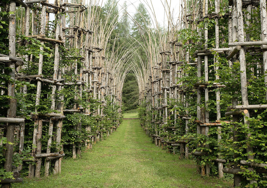 Italian artist Giuliano Mauri's epic Cattedrale Vegetale (or Tree Cathedral) proves that buildings don't have to be cold and dead. ...