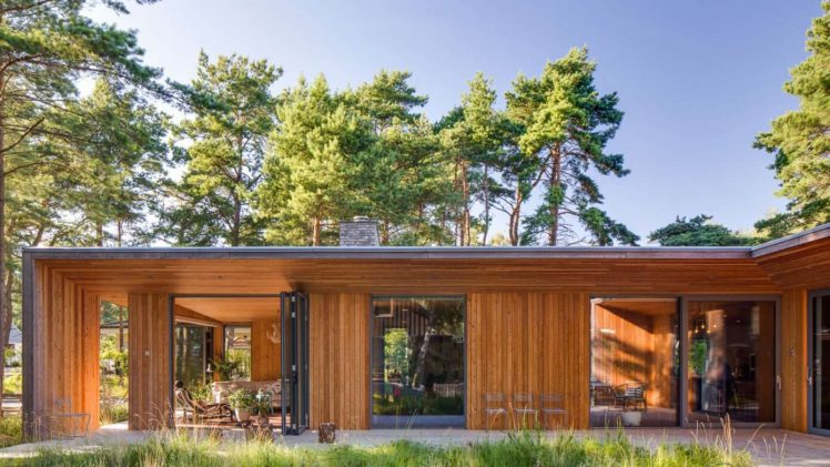 The area is rich with tall pine trees, and this plot is no exception. The project comprises three buildings: a ...