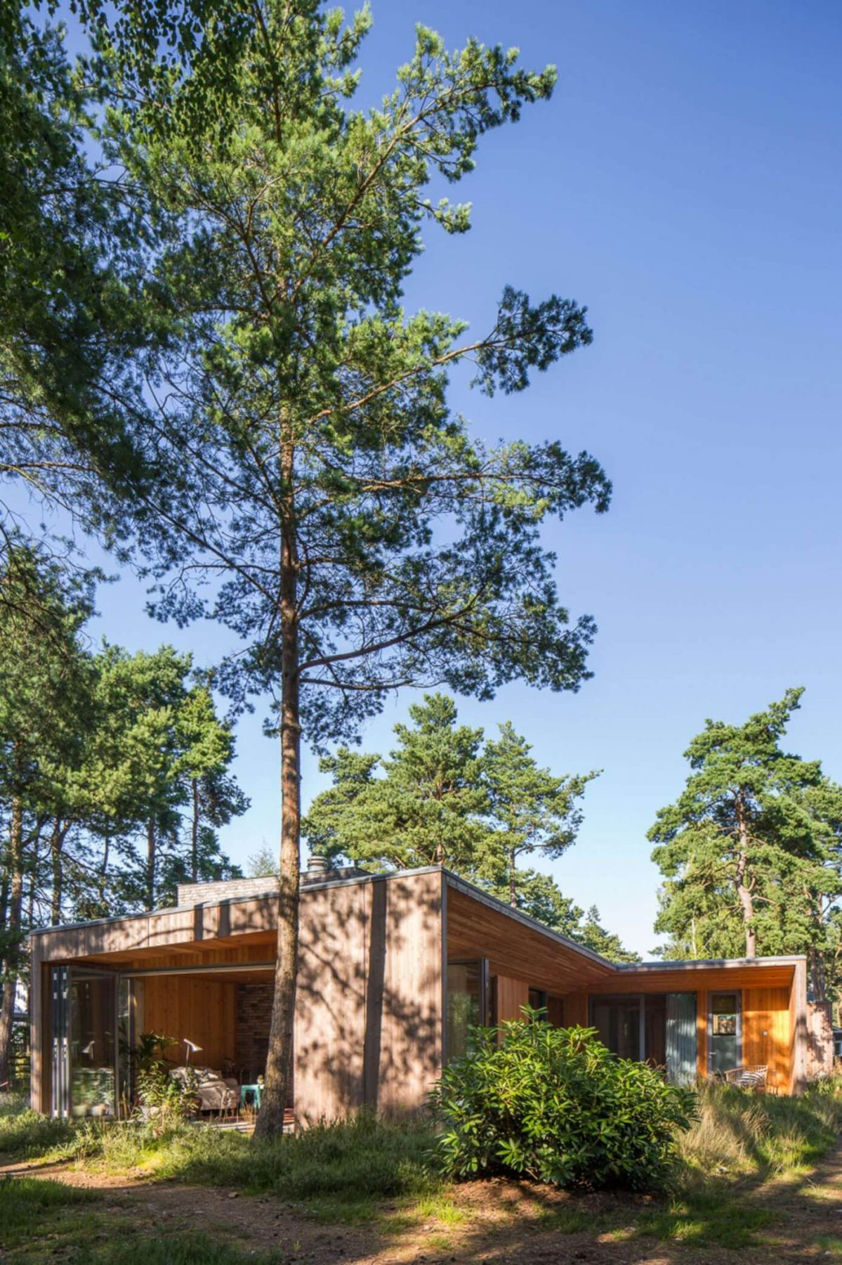 wood and contemporary architecture