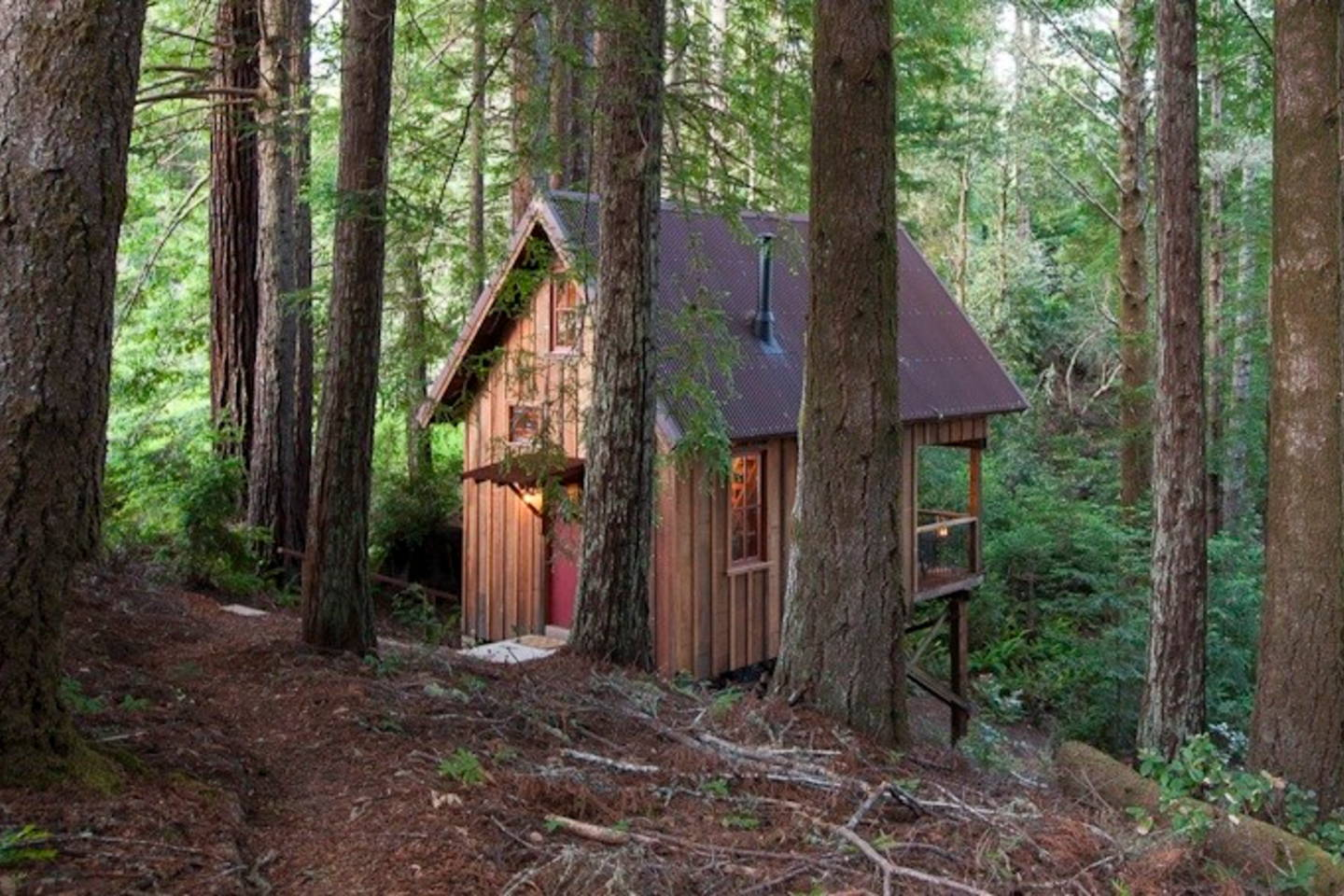 The Owl Tree cabin Mendocino, Anderson Valley