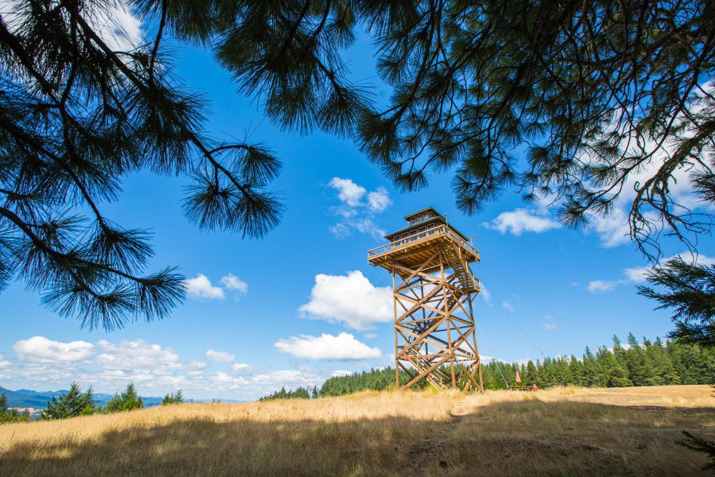 Dabney Tompkins and Alan Colley own a very special home - 40 feet high and 388-square-foot fire lookout.