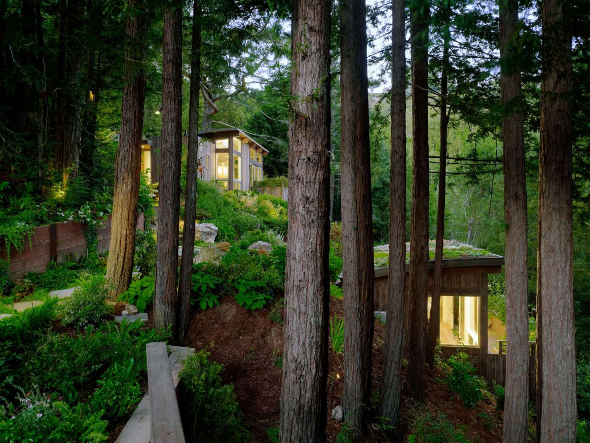 Green Cottage In The Mill Valley Forest Woodz