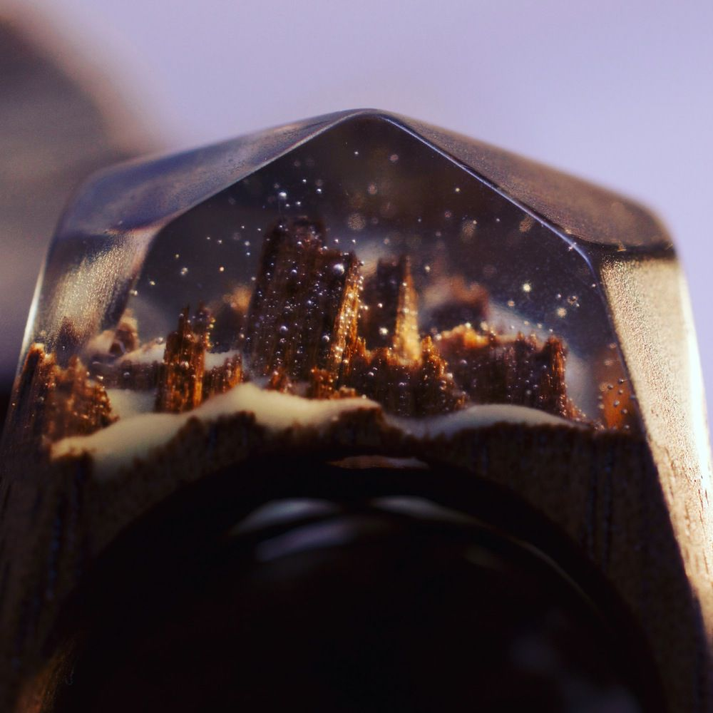 If you are a fan of jewelry then you must have one of these special wood rings with miniature worlds ...