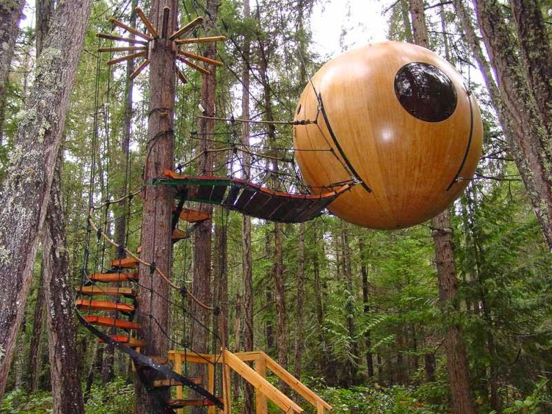 As a child, you were probably fantasizing about having a treehouse in your backyard that would be your safe haven. ...