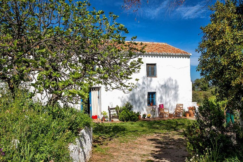 The stunning colorful interior of this 18th century cottage is full of character and emphasises mediterranean playfulness.