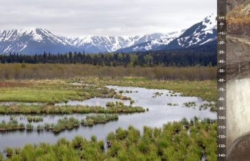 Global warming is responsible for the melting of permafrost which is subsequently releasing large amounts of methane into the atmosphere. ...