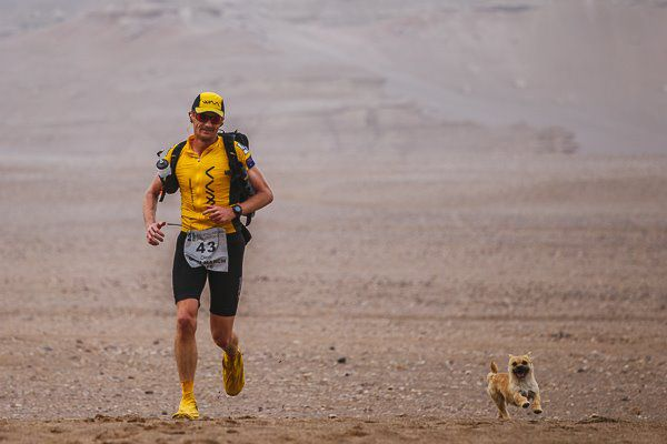 Australian ultra-runner Dion Leonard has found a new furry friend during a grueling 7-day marathon through the Gobi Desert. The ...