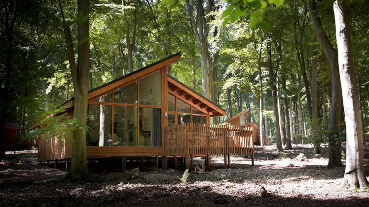 Golden Oak Hideaway cabin is a cosy love nest located in Forest of Dean, UK. Beautiful forest landscape is perfect ...