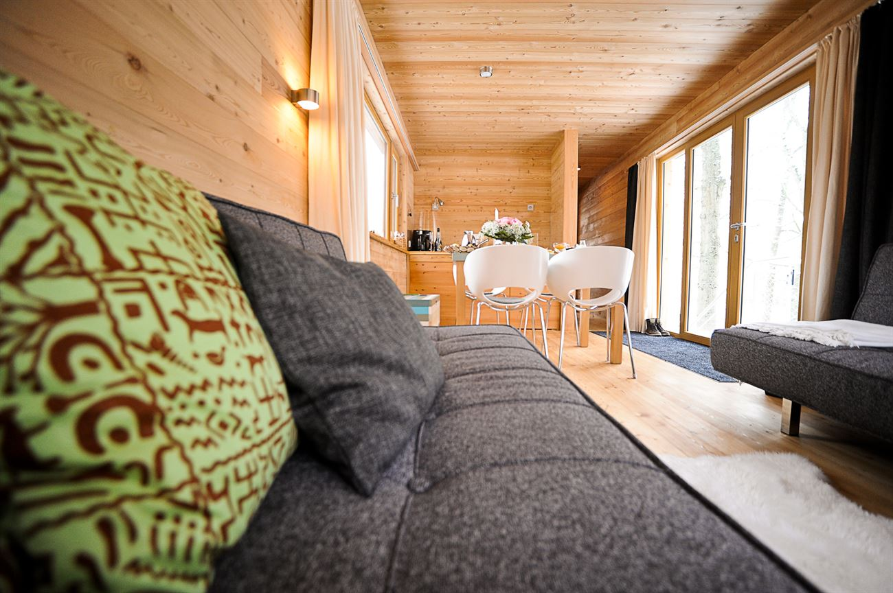 comfortable sofa in treehouse