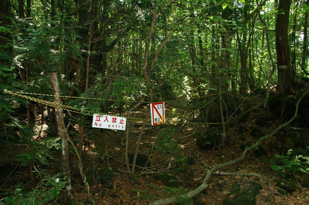 Aokigahara, also known as the Suicide Forest, is believed to be one of the most famous suicide spots.