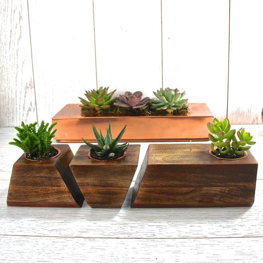 It will look even more unique if flowers grow in innovative wooden pots, which excellently complement the look of your ...