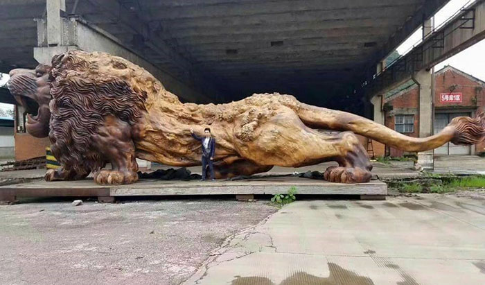 lion, Chinese architect, architect, lion sculpture, biggest in the world, China, Wood, Woodz, Roaring Lion, Myanmar, Trunk, three years