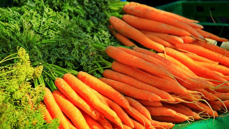 After you read these interesting facts about the carrot, you will never look at them the same way, and instantly ...