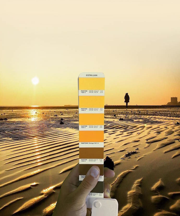 Pantone Colour Swatches, designer, photography, beach, afternoon, beach afteroon