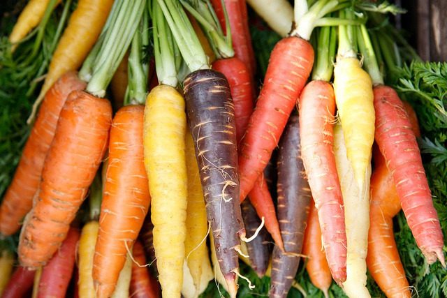 carrots, carrot, multicolor, colour, facts, interesting, woodz