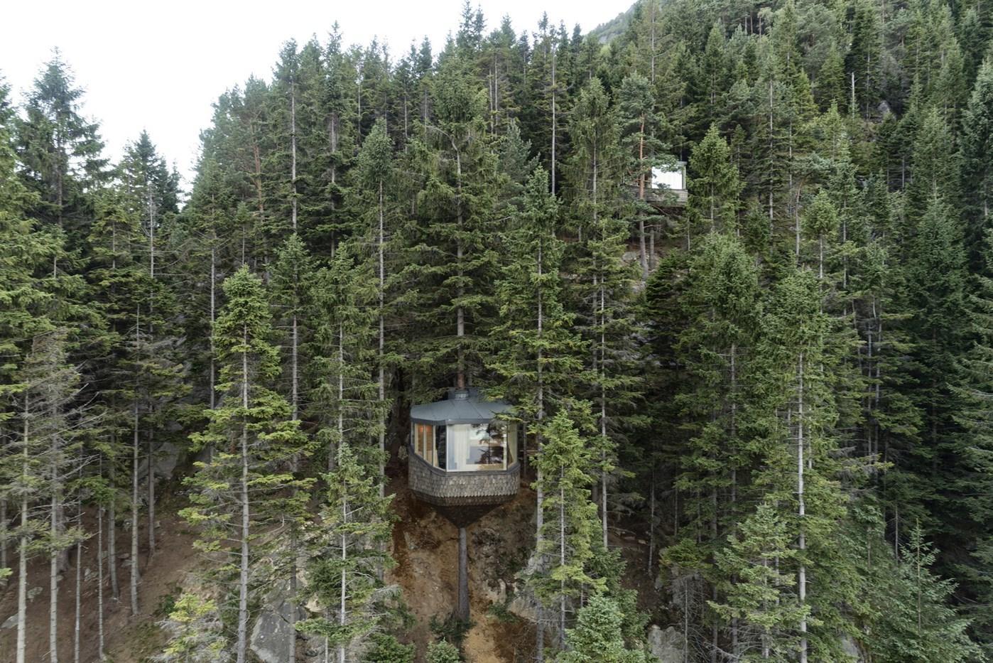 Wood cabin, treehouse