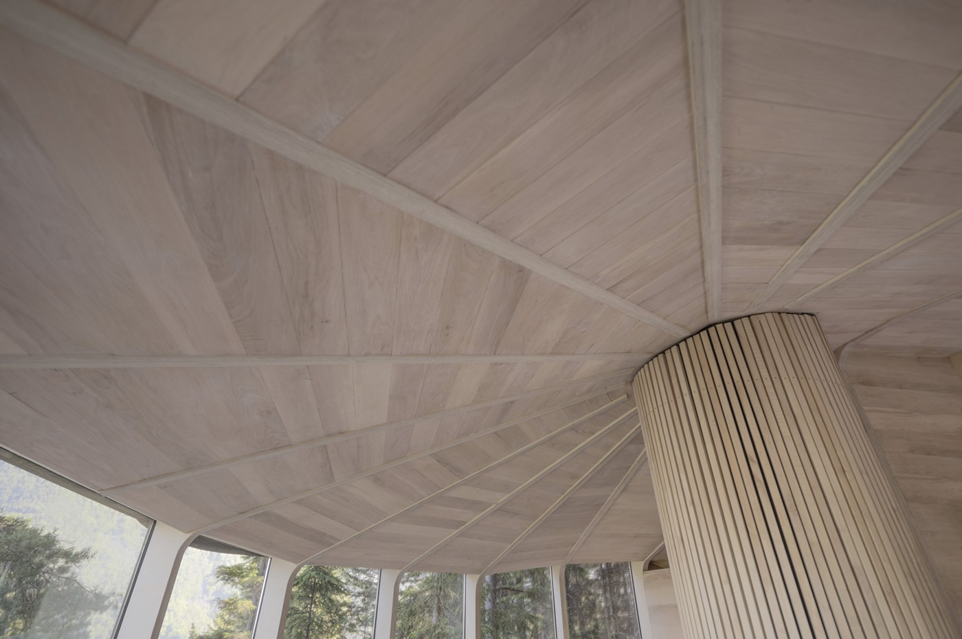 Wood ceiling treehouse design