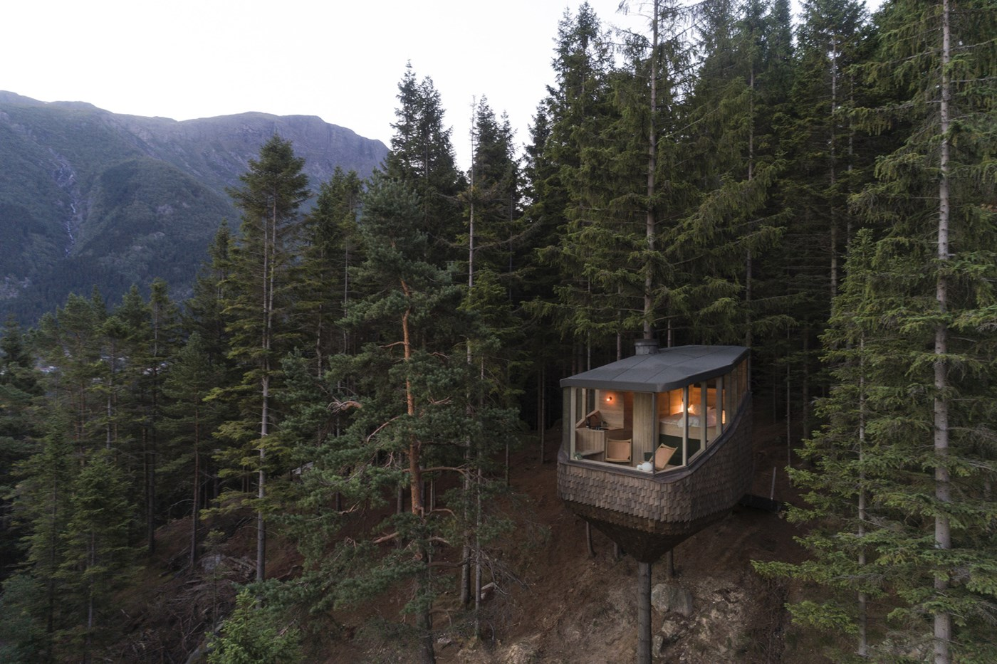 Wooden tree house